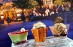 EPCOT FOOD & WINE FEST 2013