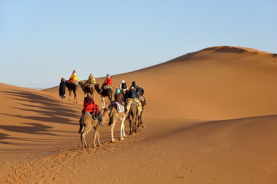 viaje-por-el-sahara-a-traves-de-camellos-cruzando-el-desierto-