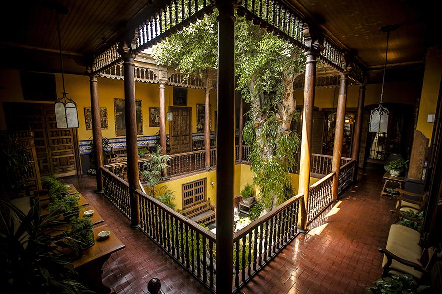 Casa-Aliaga-Ficus-Patio